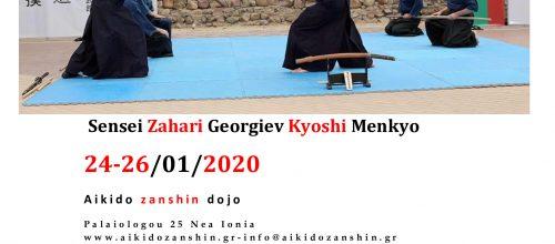 Tenshin Katori Shinto Ryu Seminar